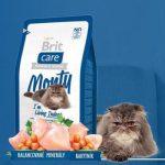 Сухие корма для кошек премиум класса отзывы ветеринаров