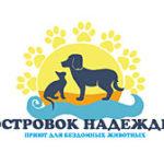 Приют для кошек на васильевском острове второй шанс