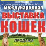 Белэкспоцентр белгород выставка кошек и собак 27 мая