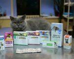 Антибиотики для кошек при инфекции в таблетках название